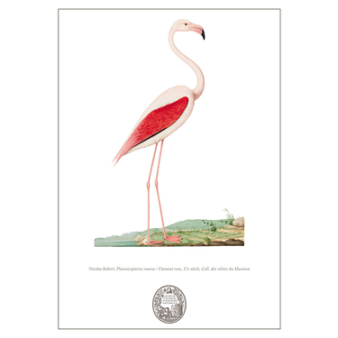 Carnet Flamant rose Collection Inspiration Vélin